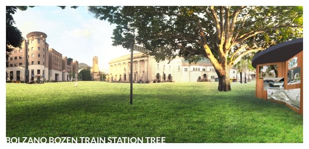 Bolzano Bozen Train Station Tree